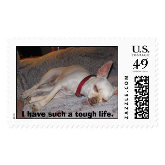 Lazy Dog, I have such a tough life. Postage
