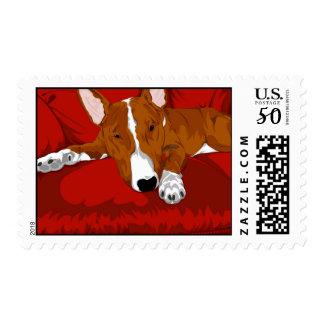 Lazy English Bull Terrier Dog Breed Illustration Postage