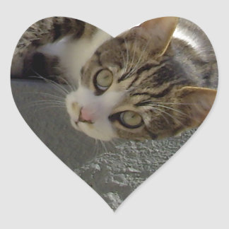 Lazy Kitty Heart Stickers