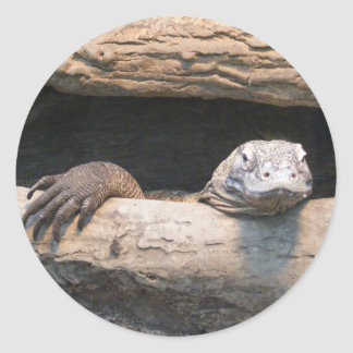 Lazy Komodo Dragon Sticker