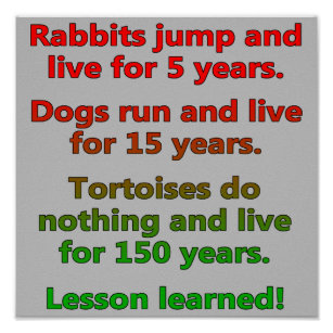 Lesson of Time ~ KARMA Poster   Zazzle.com   Life lesson ...   Lesson Learned Poster