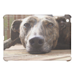 Case Savvy iPad Mini Glossy Finish Case with Whippet Phone Cases design