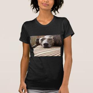 Lazy Lurcher T Shirts