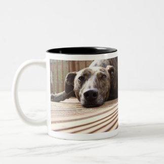 Lazy Lurcher Two-Tone Coffee Mug