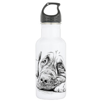 Lazy Mastiff Stainless Steel Water Bottle