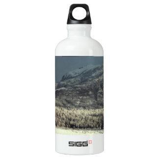Lazy Mountain 01 Aluminum Water Bottle