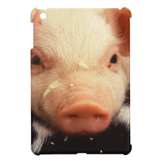 Lazy Piglet Case For The iPad Mini