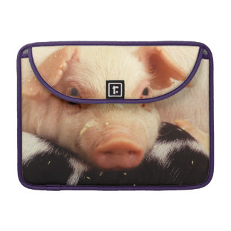 Lazy Piglet MacBook Pro Sleeve