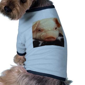 Lazy Piglet Shirt
