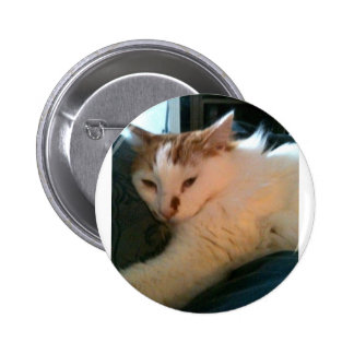 Lazy, Relaxed Cat Pinback Button
