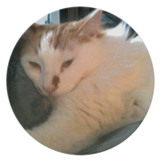 Lazy Relaxed Cat Dinner Plate