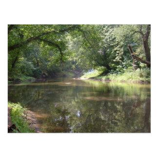 Lazy River Postcard