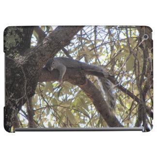 Lazy Rock Squirrel iPad Air Cases