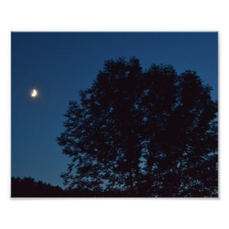 """LAZY SEPTEMBER MOON WATCHING OVER TREES"" PHOTO PRINT"