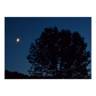 LAZY SEPTEMBER MOON WATCHING OVER TREES POSTER