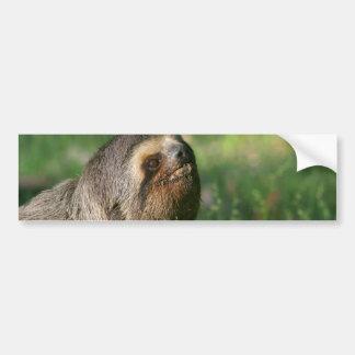 Lazy Sloth Bumper Sticker Car Bumper Sticker