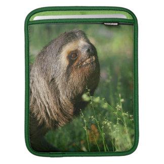 Lazy Sloth iPad Sleeve