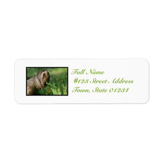 Lazy Sloth Mailing Labels