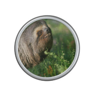 Lazy Sloth Bluetooth Speaker