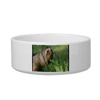 Lazy Sloth Pet Bowl