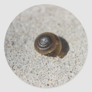 Lazy Snail Classic Round Sticker