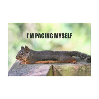 Lazy Squirrel Photo Canvas Print