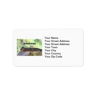 Lazy Squirrel Photo Label