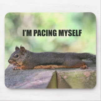 Lazy Squirrel Photo Mouse Pad