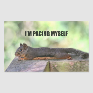 Lazy Squirrel Photo Stickers