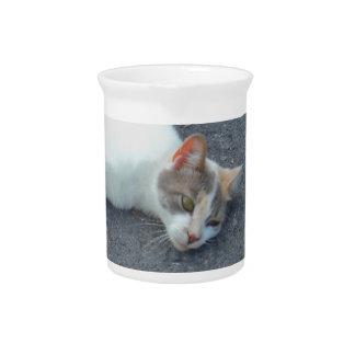 Lazy Street Nap Kitty Drink Pitcher