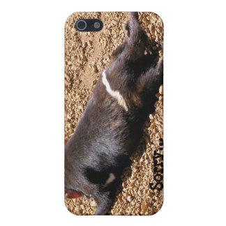 Lazy Tassie Devil Case For iPhone SE/5/5s