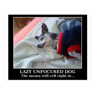Lazy Unfocused Dog Postcard