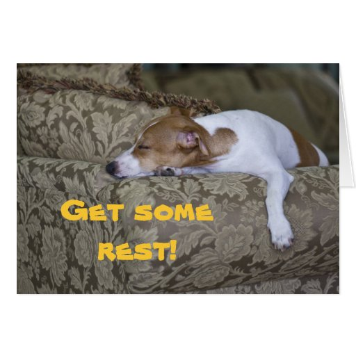LazyBones Get Some Rest Greeting Cards Zazzle