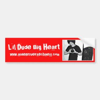 LDBH Aiden Bumper Sticker