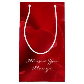 Le amaré siempre bolsa de regalo pequeña