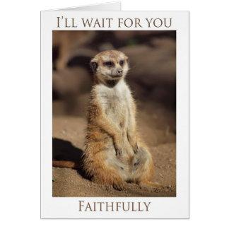 Le esperaré cardo fielmente tarjeta de felicitación