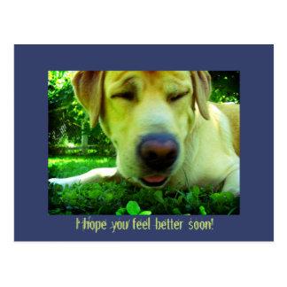 ¡Le espero sensación mejor pronto! Tarjetas Postales