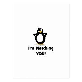 Le estoy mirando pingüino tarjetas postales