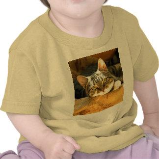"""""""Le estoy mirando"""" - un gatito muy lindo Camiseta"""