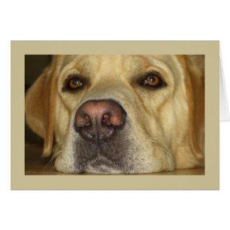 Le falto - Labrador amarillo lindo Tarjeta De Felicitación