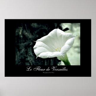 Le Fleur de Versalles Poster