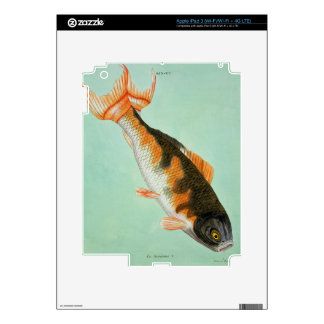 Le Noriroux, engraved by Francois Nicholas Martine iPad 3 Skins