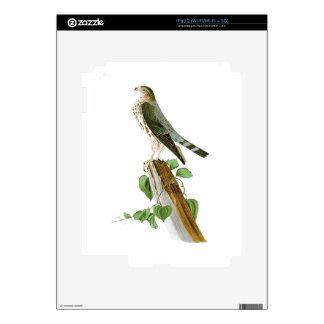 Le Petit Caporal John Audubon Birds of America Decal For The iPad 2