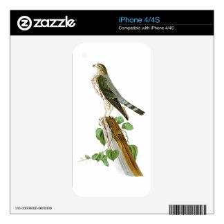Le Petit Caporal John Audubon Birds of America iPhone 4 Skin