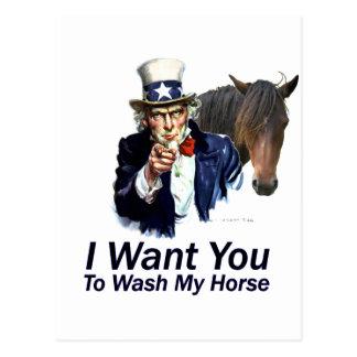 Le quiero: Para lavar mi caballo Tarjeta Postal
