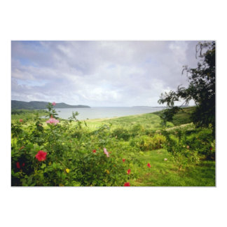 Le Roberto, flores de Martinica Anuncio