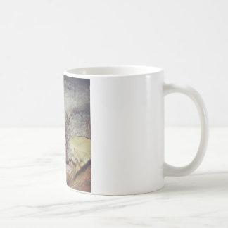 Le Toad Nighttime Nature Photography Coffee Mug