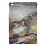 Le Toad Nighttime Nature Photography Cover For The iPad Mini
