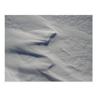 Le vent dans la neige postcard