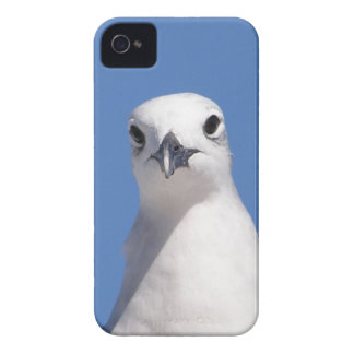 Le veo caso del iPhone 4/4s Case-Mate iPhone 4 Protectores